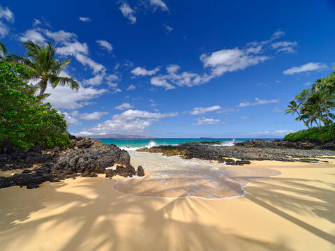 daytime view of Secret Beach on the island of Maui with the shadows from the palm trees in the foreground as a wave comes in