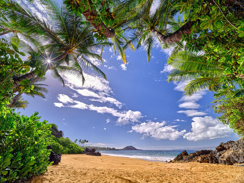 A palm tree cove frames a classic Maui beach scene looking south towards Makena and a sun star popping through the palms