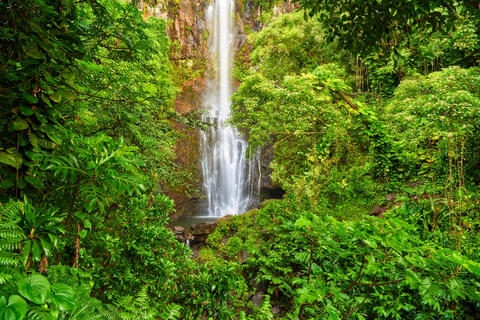 the beautiful wailua falls near Hana, Hawaii on the island of Maui surrounded by lush green foliage .