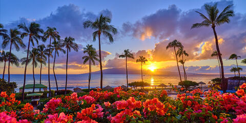 A very beautiful sunset at ka'anapali beach with coconut palms and bright red flowers in the flowers in the foregound with the island of Lanai in the background