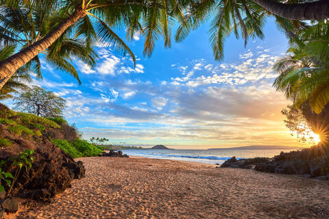 Looking out from a palm tree cave in Makena on the island of Maui at sunset with the sun peeking through around the corner.  Photograph by Andrew Shoemaker