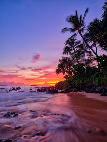 afterglow of sunset vertical orientation of secret beach on maui with coconut palms on the right and water in the foreground