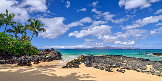 secret beach, makena, wailea, watercolor, blue, paradise, palms, wedding beach, secret cove