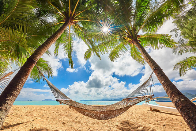 a relaxing scene as an inviting hammock is stretched between two trees at Secret Island on Oahu,  Hawaii