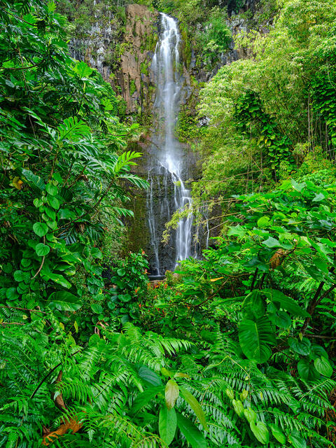 vertical image of Wailua Falls surrounded by lush green foliage near Hana on the island of Maui Hawaii