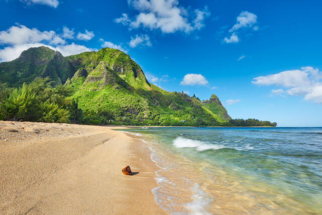 fine art photograph of the beautiful tunnels beach (also known as Maluaka) on the island of Kauai with a coconut found washing up in the tide along the beach
