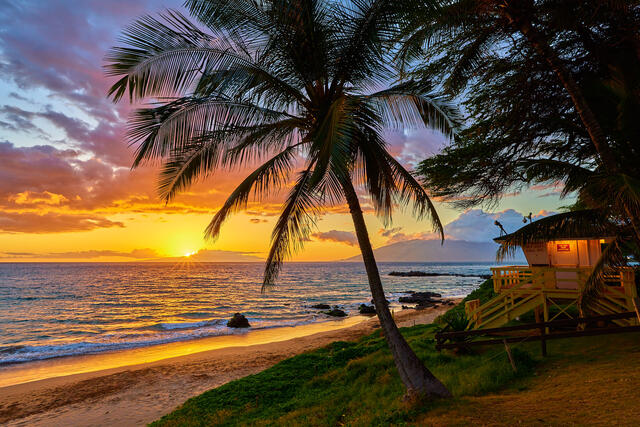 sunset along kamaole 3 beach in Kihei featuring a coconut palm tree and lifeguard shack