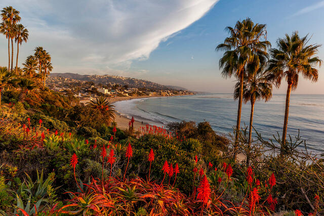 The Golden State | California Coast Photography