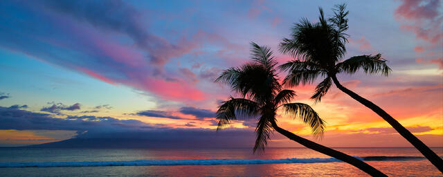 panoramic sunset photograph featuring two palms on Kaanapali Beach on the island of Maui, Hawaii.