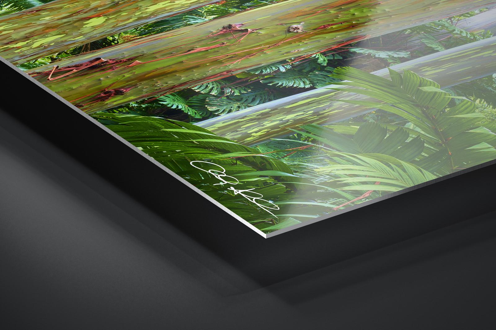 Metal Print   Ready to Hang print preview