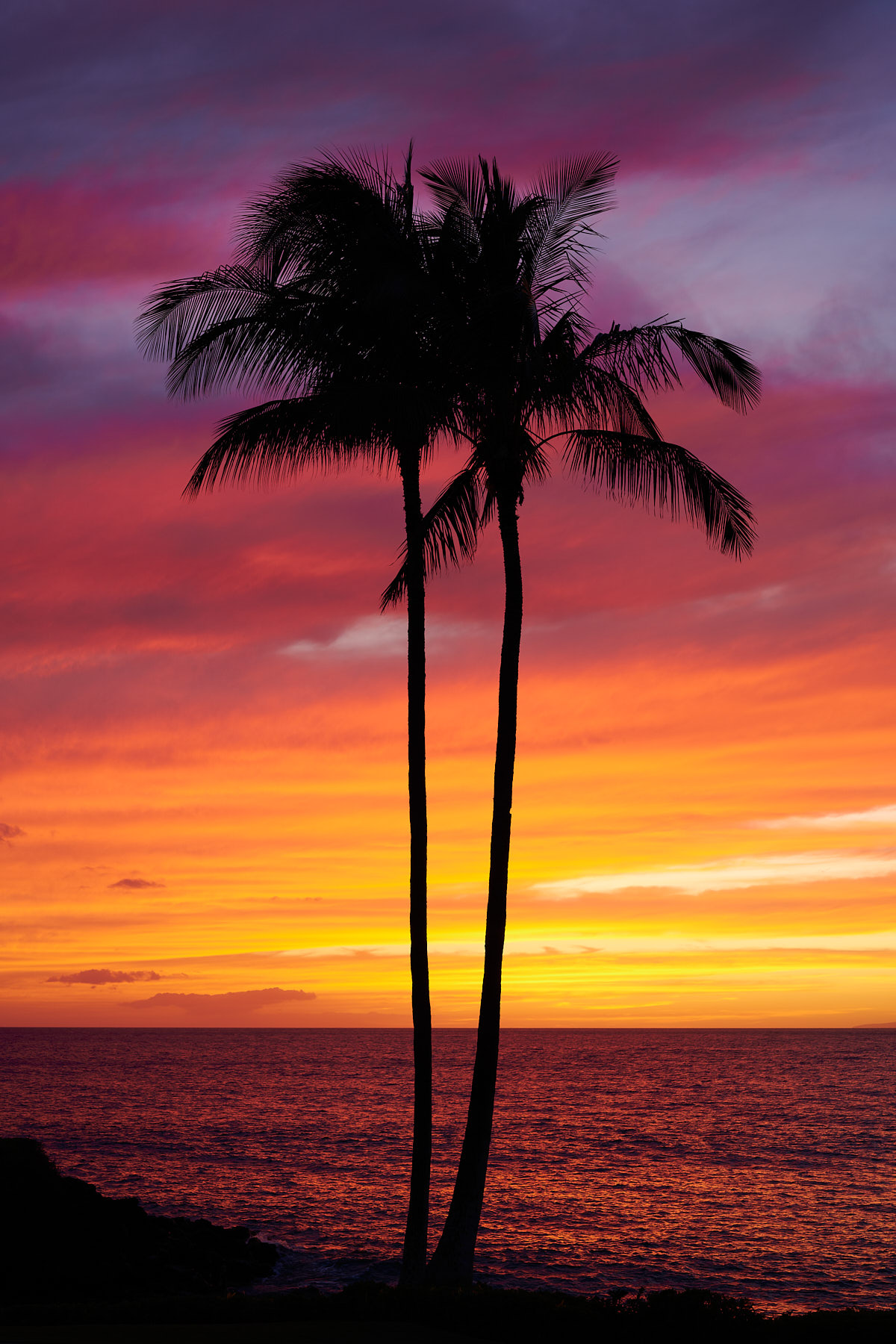 a fiery Hawaiian sunset captured with two twin palm tree silhouettes on the shores of Wailea, Maui
