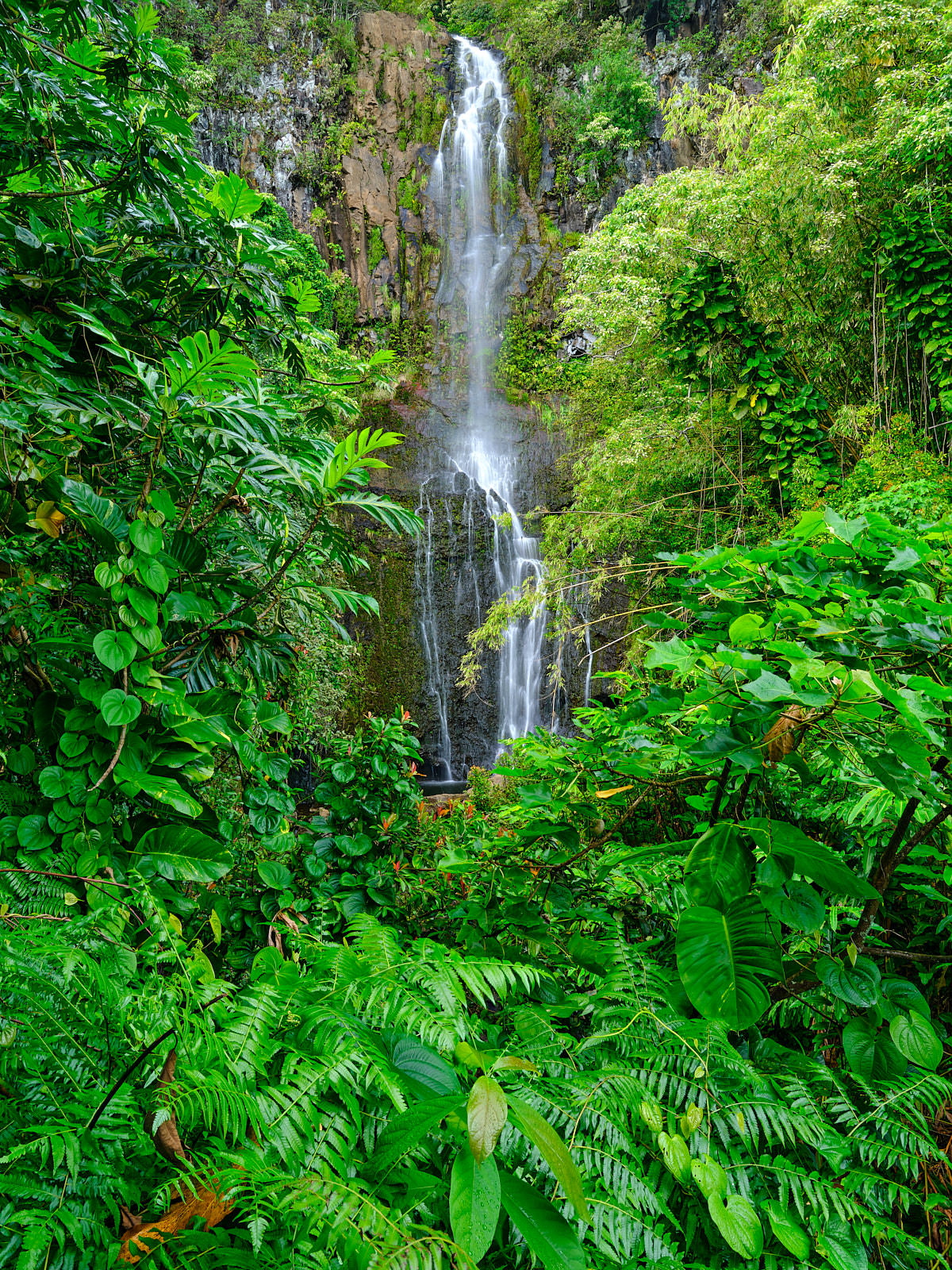 vertical image of Wailua Falls surrounded by lush green foliage near Hana on the island of Maui Hawaii