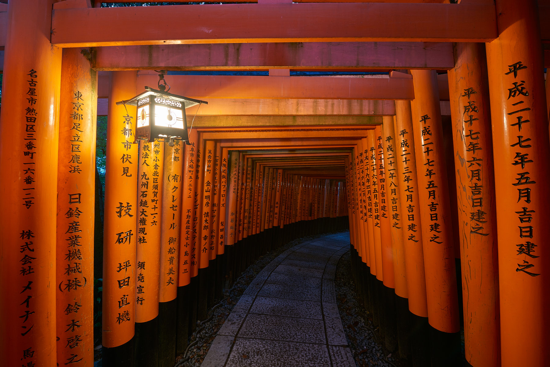 Looking down the gates of the spectacular fushimi inari shrine in Kyoto, Japan with a latern providing light before dawn