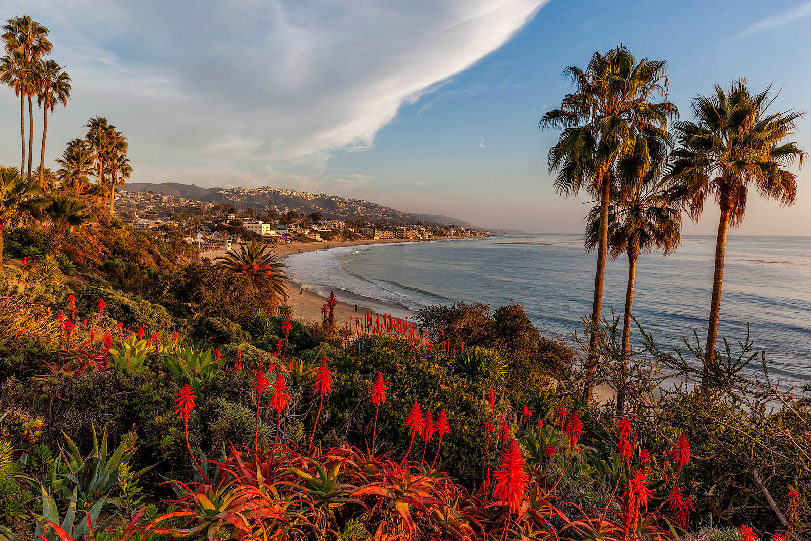 A fantastic setting at Heisler Park in Laguna Beach and I found the lovely aloe in bloom a fantastic foreground for this shot...