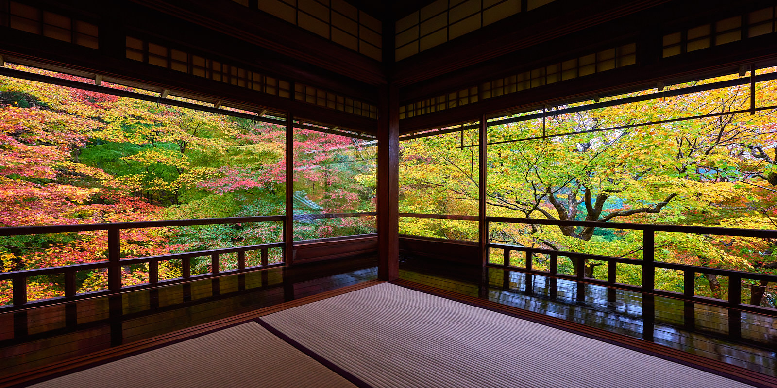 a panoramic scene at the Rurikoin temple in Kyoto, Japan with colorful maple trees in the background